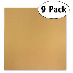 Pack of 9 Premium 14″ X 14″ Non-stick Dehydrator Sheets- For Excalibur 2500, 3500, 2 ...