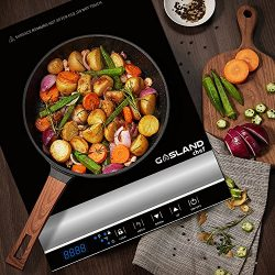 GASLAND chef IH20BL Portable Induction Cooktop 1800W Electric Hob cooker Countertop Burner with  ...