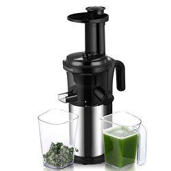 Juicer Machine, Argus Le Slow Masticating Juicer Extractor with Reverse Function, Cold Press Jui ...