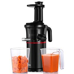 Slow Masticating Juicer Easy to Clean, Cold Press Juicer with Quiet Motor and Reverse Function,  ...