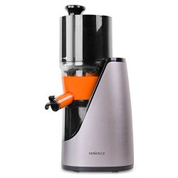 Tenergy Masticating Juicer, Anti-Oxidation Slow Speed Cold Press Juicer, High Nutrient Fresh Veg ...