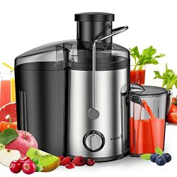 Easehold 600W Juicer Dual Speed Vegetable Juice Extractor with Juice Jug and Pulp Container