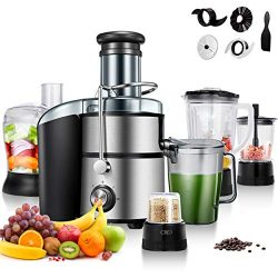 Costway 5-in-1 Food Processer, Smoothie Blender, Wide Mouth Stainless Steel Centrifugal Juice Ex ...