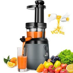 Slow Masticating Juicer Extractor, HAYKE Juicer with Quiet Motor and Brush to Clean Easily, Cold ...