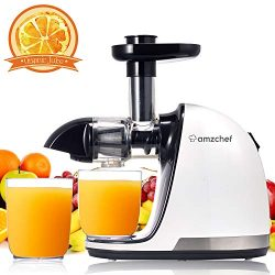AMZCHEF Juicer, Slow Masticating Juicer Extractor Professional Cold Press Juicer Machine with Qu ...