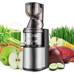 Flexzion Masticating Juicer Machine – Slow Cold Press Juice Extractor Maker Electric Juici ...