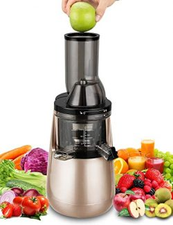 Slow Masticating Juicer by Tiluxury, Low Speed With Wide Chute Anti-Oxidation,Whole Fruit and Ve ...