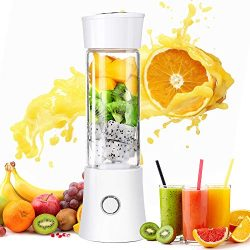 Taillansin【2019 Newest】Portable Blender, Multi-functional Travel Electric Juice Cup with USB R ...