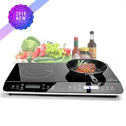 Duxtop 1800-Watt Portable Induction Cooktop Countertop Burner (Dark Black)