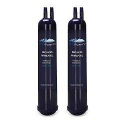 Mountain Flows Replacement for Refrigerator Water Filter Kenmore 9030, 9083 (2 Packs)
