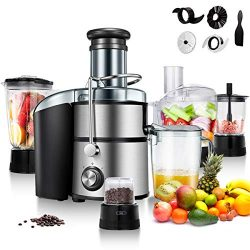 Goplus Juice Extractor 5-in-1 for Fruit, Vegetable and Meat w/Blender, Chopper, Grinder and Food ...