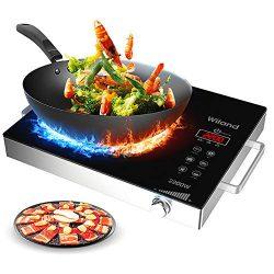 Portable Induction Cooktop Countertop Burner, 2200-Watt 120-Volts Smart Touch Sensor Countertop  ...