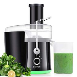COSTWAY Juice Extractor, 65MM Wide Mouth Stainless Steel Juicer Machines, 2-Speed Setting High S ...