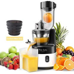 Slow Juicer Machine Extractor with Slow Cold Press Masticating Squeezer Mechanism Technology 200 ...
