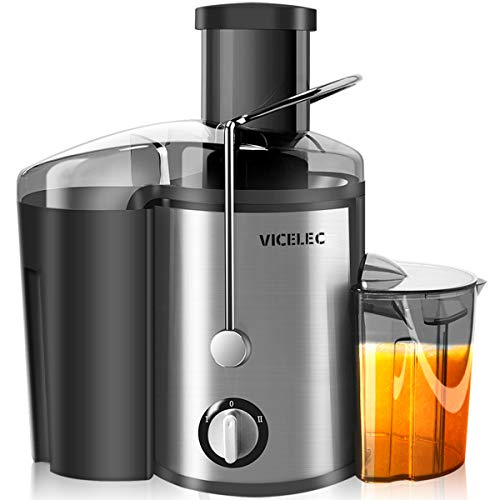 Juicer Machines with Wide Mouth Dual Speed Centrifugal Juicer for Fruits and Vegetable, 600W Sta ...