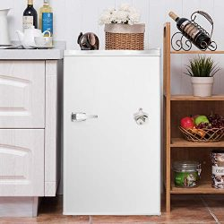 3.2 CU. FT Compact Refrigerator with Handle MIni Fridge Chiller and Freezer Compartment with Rem ...
