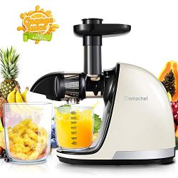 Slow Juicer,AMZCHEF Slow Masticating Juicer Extractor Professional Machine with Quiet Motor/Reve ...