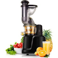 Juicer Machines,Slow Masticating Juicer Extractor Compact Cold Press Juicer Machine Wide Chute C ...