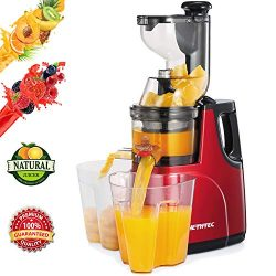 Masticating Juicer Machines, Hethtec Cold Press Juice Extractor with Large Double-Chute and Clea ...