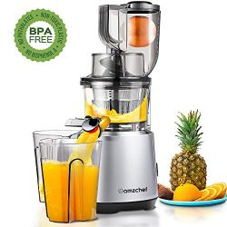 AMZCHEF Slow Juicer Slow Masticating Juicer Cold Press Juicer Vegetable&Fruit Extractor Juic ...