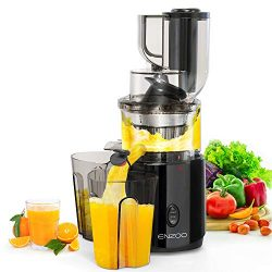 Juicer Machines, ENZOO 2020 Upgraded Masticating Juicer Extractor, Slow Cold Press Juicer, Slow  ...
